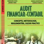 Audit financiar-contabil: Concepte, metodologie, reglementări, cazuri practice